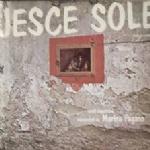 JESCE SOLE