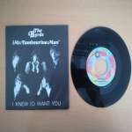 Mr. Tambourine Man - I Knew I'd Want You