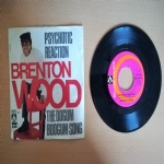 Psychotic Reaction - The Oogum Boogum Song