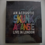 An acoustic - Skunk Anansie - Live in London
