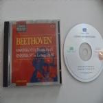 I grandi musicisti - Beethoven