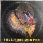 Full time winter VINILE